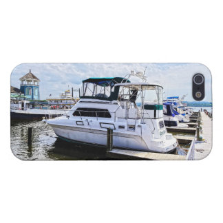 Cabin Cruisers by Founders Park Alexandria VA Cases For iPhone 5