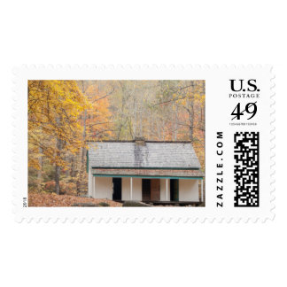 Cabin in the Mountains Postage