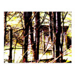 Cabin in the Woods Postcards