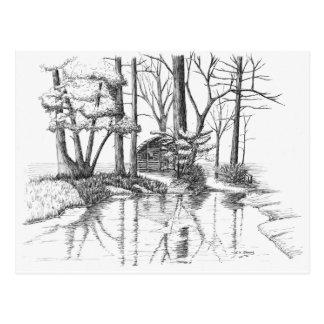Cabin Pond Postcard