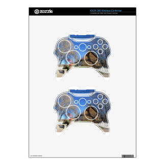 Cabina del mormón de Arizona Mando Xbox 360 Skins