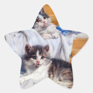 Cabinet cat star sticker