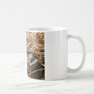 Cabo Lizzard 1 Coffee Mug