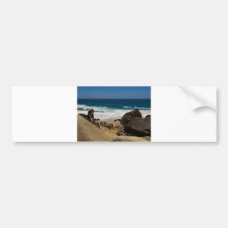 Cabo San Lucas beach 27 Car Bumper Sticker