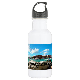 Cabo San Lucas Stainless Steel Water Bottle