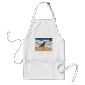 Cabo Seagull 1 Aprons