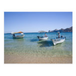 Cabo Water Taxis Post Card