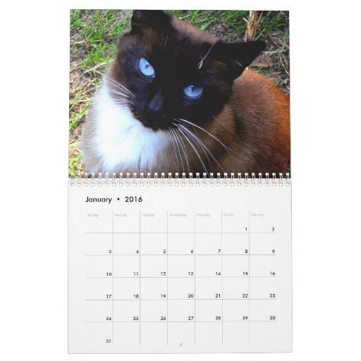 'Caboodle Ranch' Calendar