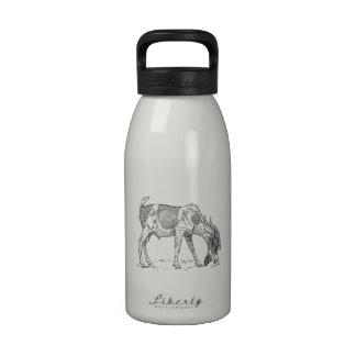 Cabra barbuda botella de beber