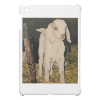 Cabra blanca 213 del bebé