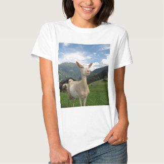 Cabra blanca poleras