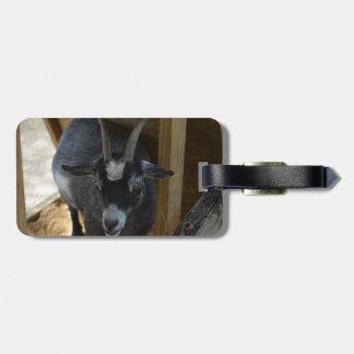 cabra blanco y negro debajo del animal de madera etiquetas bolsa