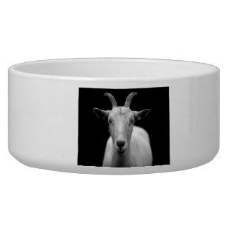 Cabra Comedero Para Mascota