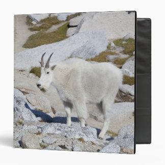 """Cabra de Billy, en encantamientos superiores Carpeta 1 1/2"""""""