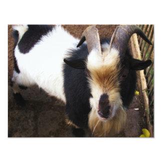 """Cabra de Billy Invitación 4.25"""" X 5.5"""""""
