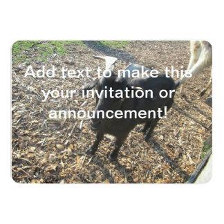 """Cabra de cuernos invitación 5"""" x 7"""""""