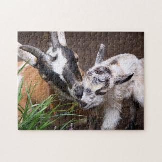 Cabra de la mamá y del bebé puzzles con fotos