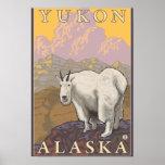 Cabra de montaña - el Yukón, Alaska Impresiones