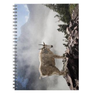 Cabra de montaña en paso del Gunsight Libros De Apuntes Con Espiral