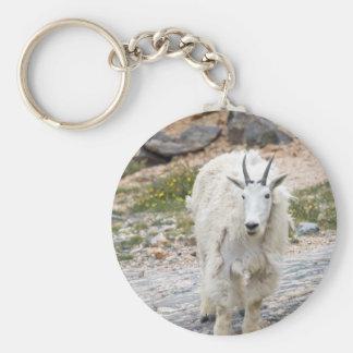 Cabra de montaña llavero redondo tipo pin