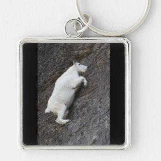 Cabra de montaña llaveros