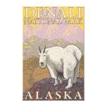 Cabra de montaña - parque nacional de Denali, Alas Lona Estirada Galerias