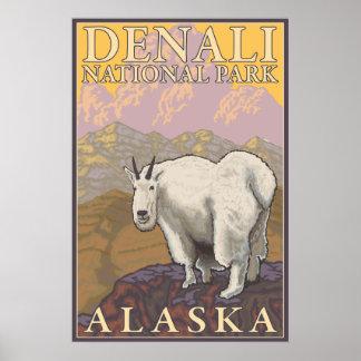 Cabra de montaña - parque nacional de Denali, Alas Posters