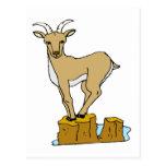Cabra de montaña postal