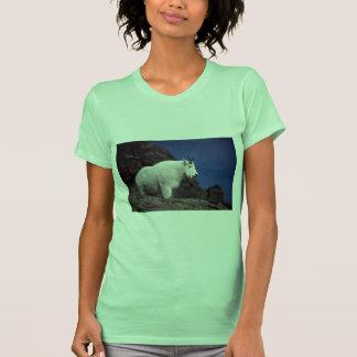Cabra de montaña rocosa (varón grande) camisetas