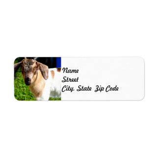 Cabra del bebé - etiqueta del remite etiquetas de remite