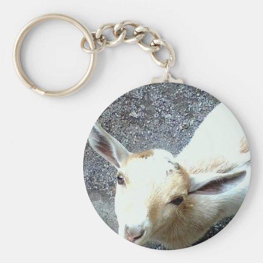 Cabra del bebé llavero redondo tipo pin