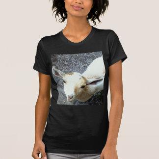 Cabra del bebé tshirt