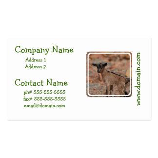 Cabra del bebé plantilla de tarjeta de visita