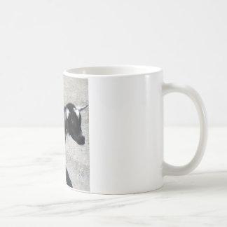 Cabra del bebé taza básica blanca