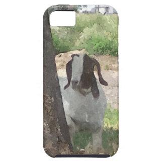 Cabra del Boer de la acuarela iPhone 5 Case-Mate Coberturas