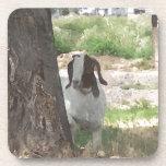 Cabra del Boer de la acuarela Posavasos