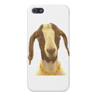 Cabra del Boer iPhone 5 Fundas
