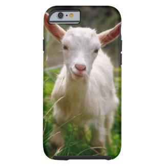 Cabra del niño funda de iPhone 6 tough
