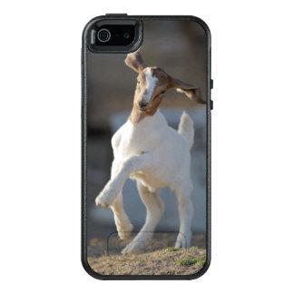 Cabra del niño que juega en tierra funda otterbox para iPhone 5/5s/SE