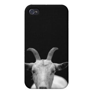 Cabra iPhone 4 Coberturas