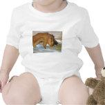 Cabra hambrienta linda trajes de bebé