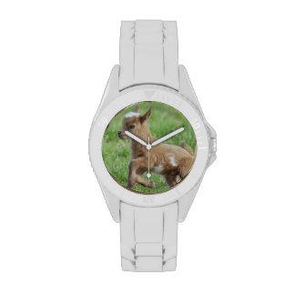 Cabra linda del bebé relojes de mano