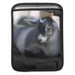 Cabra Mangas De iPad