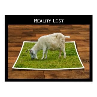 Cabra perdida de la realidad que pasta en la postales