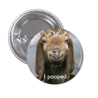 Cabra pooping. pin redondo de 1 pulgada