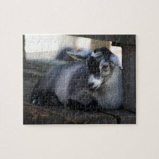 Cabra Puzzles Con Fotos