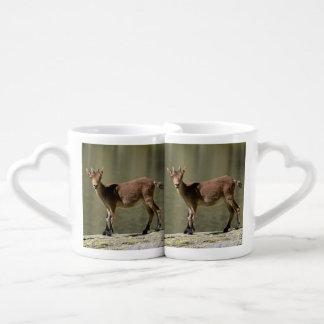 Cabra salvaje femenina joven, cabra montés ibérico taza para parejas