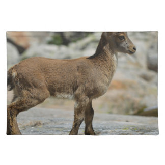 Cabra salvaje masculina joven, cabra montés ibéric manteles