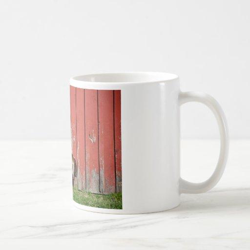 Cabra vieja soñolienta taza básica blanca