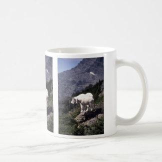 Cabras de montaña rocosa niñera y niño taza de café